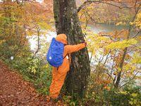 女性のための森林セラピー