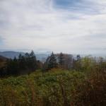 自然園からの雲海